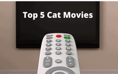 Top 5 Cat Movies
