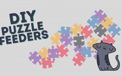 DIY Puzzle Feeders