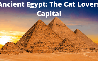 Ancient Egypt: The Cat Lovers Capital
