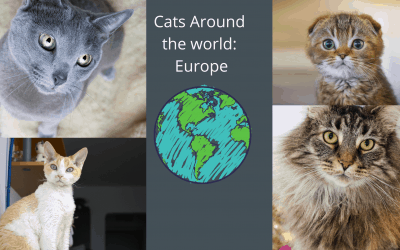 Cat Breeds of the World: Europe